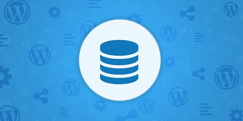 WordPress database maintenance plugins