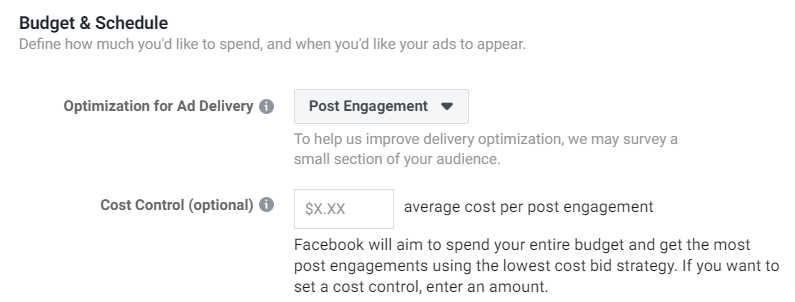 Cost control options in the Facebook Ads Manager.