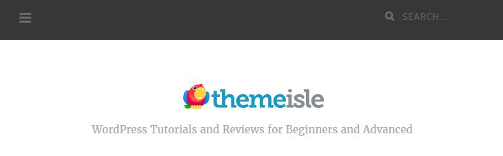 ThemeIsle's target audience profile.