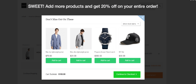 A pre-checkout up-sell.