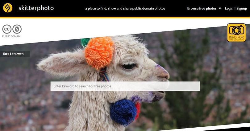 free wordpress web design resources skitterphoto