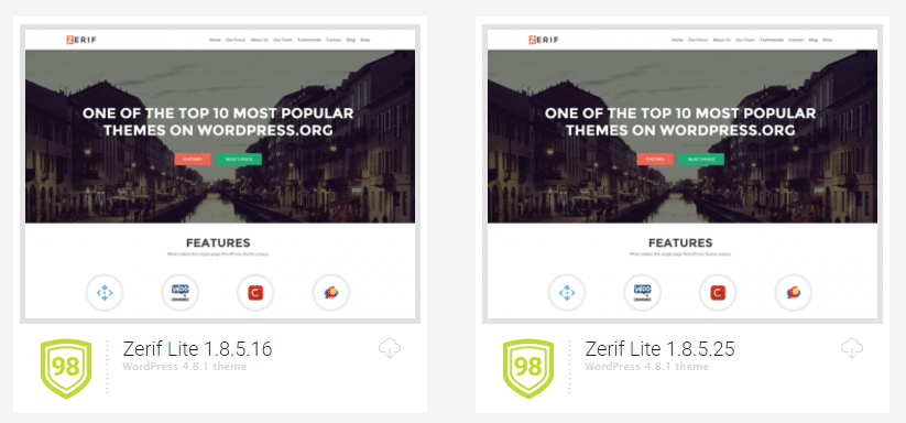 An example of a secure WordPress theme