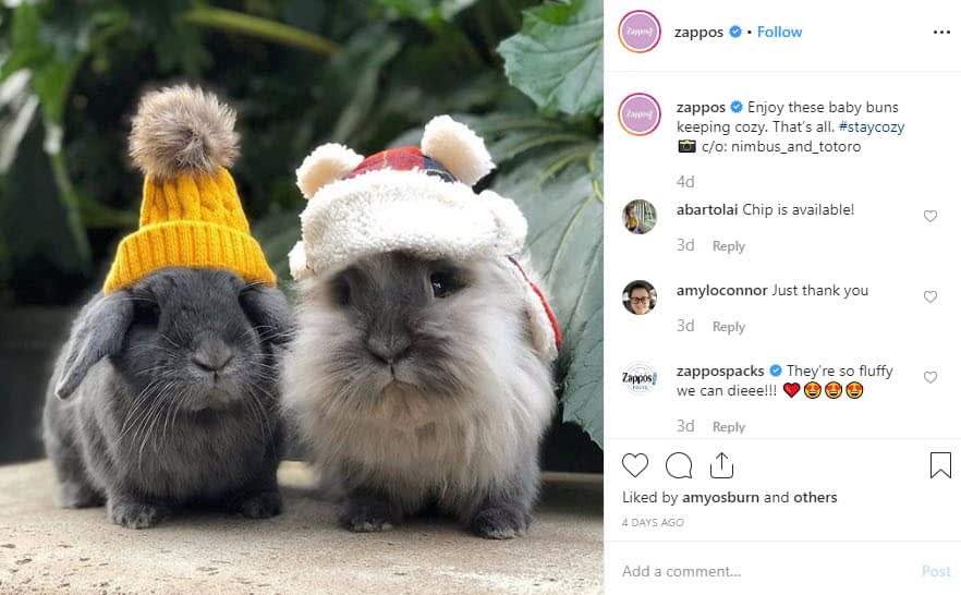 zappos instagram - social media style guide