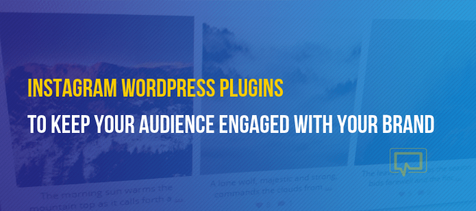 4 Instagram WordPress Plugins to Keep Your Audience Engaged With Your Brand