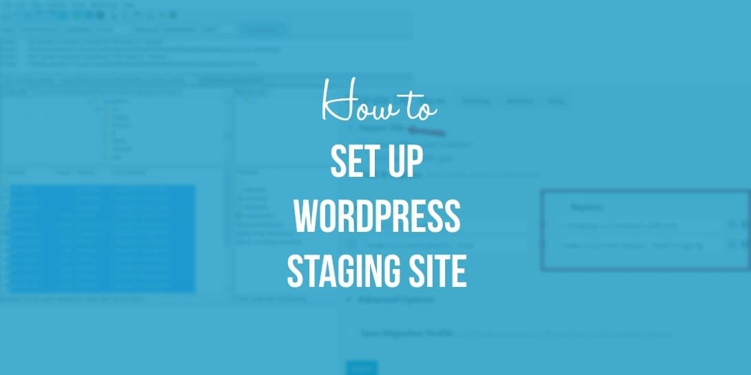 Beginner's Guide: How to Set Up a WordPress Staging Site