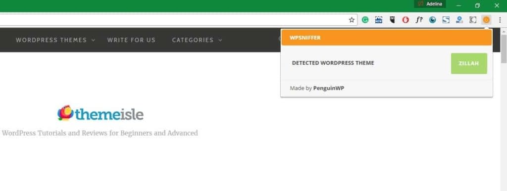 6 Best WordPress Theme Detectors Tested and Compared
