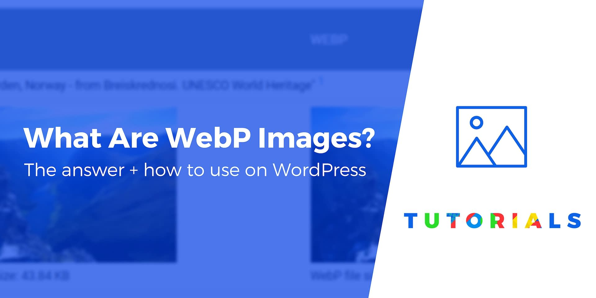 What Is WebP? Plus How to Use WebP Images in WordPress