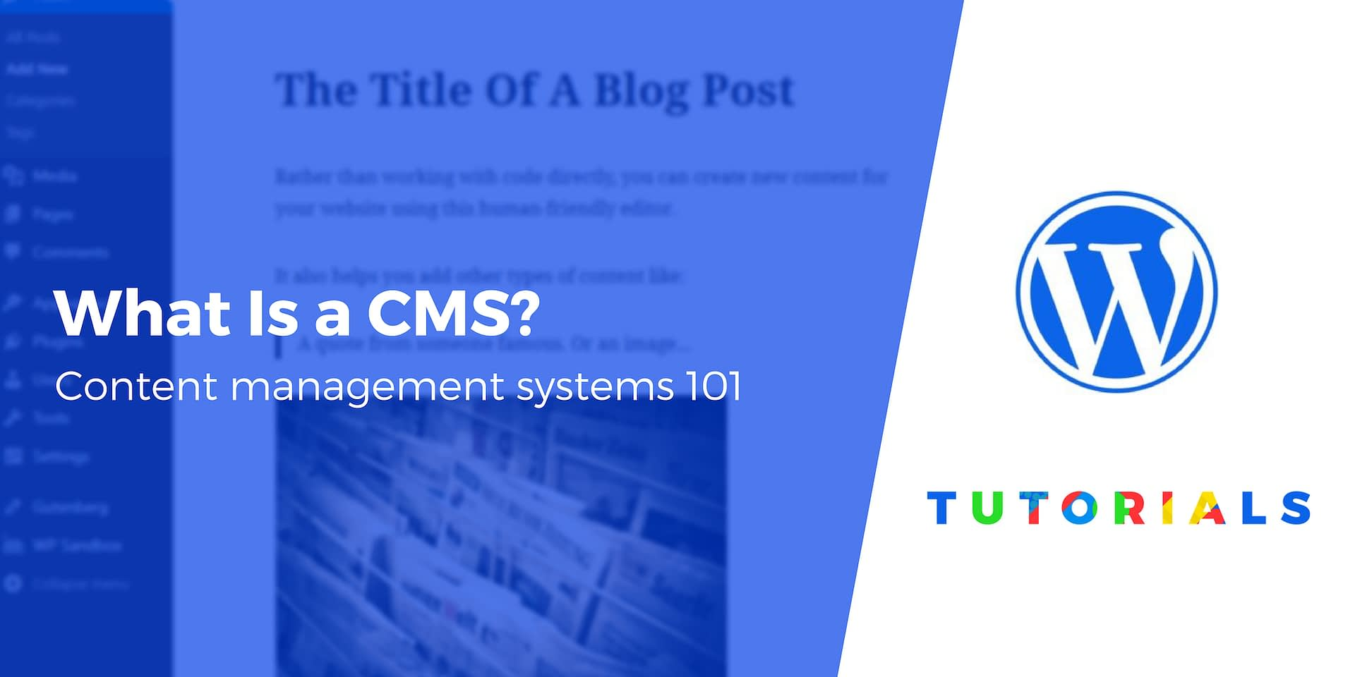 What Is a Content Management System (CMS)? Plus 7 CMS You